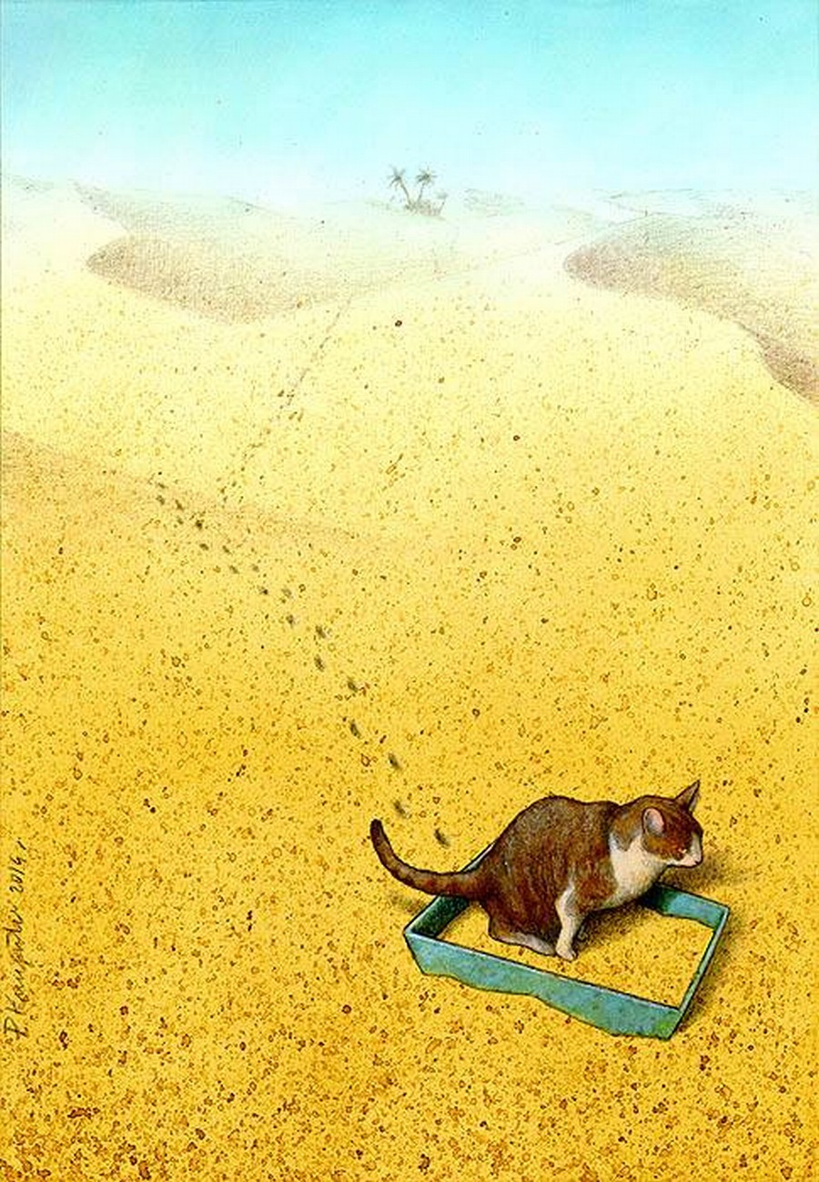 Cat Sandbox - Pawel Kuczynski Canvas