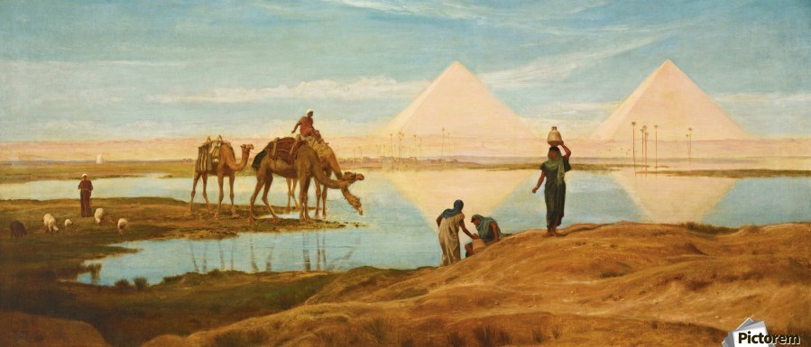 People and camels by the pyramids  Print