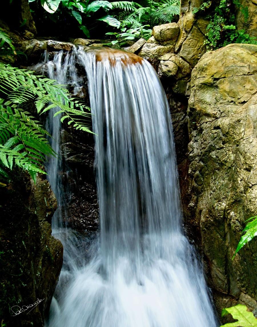 LIttle Hong Kong Park Waterfall  Print