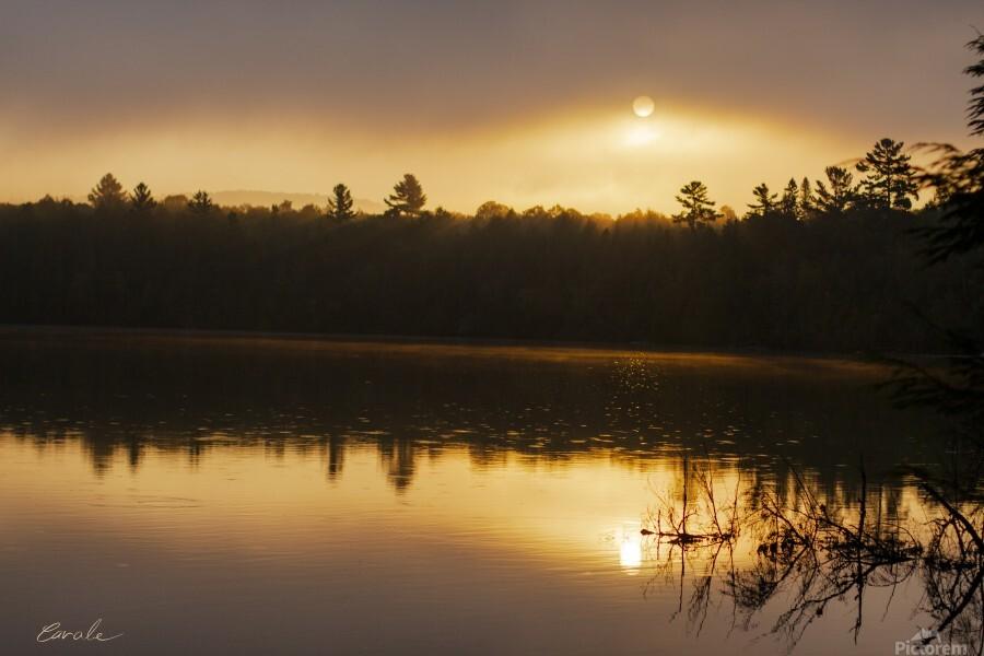 Lever de soleil sur le lac Earhart  2 - Sunrise on Earhart Lake 2  Print