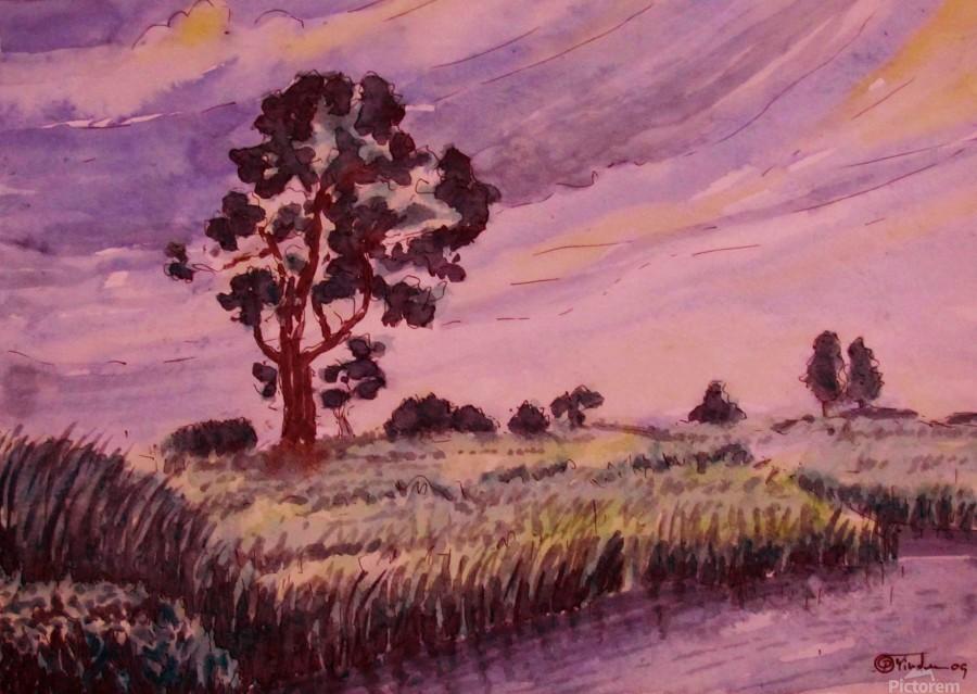 Evening Landscape 2  Print