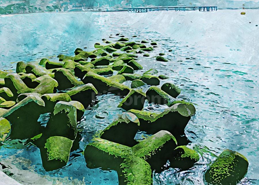 Wall Nature Decoration 7  Print
