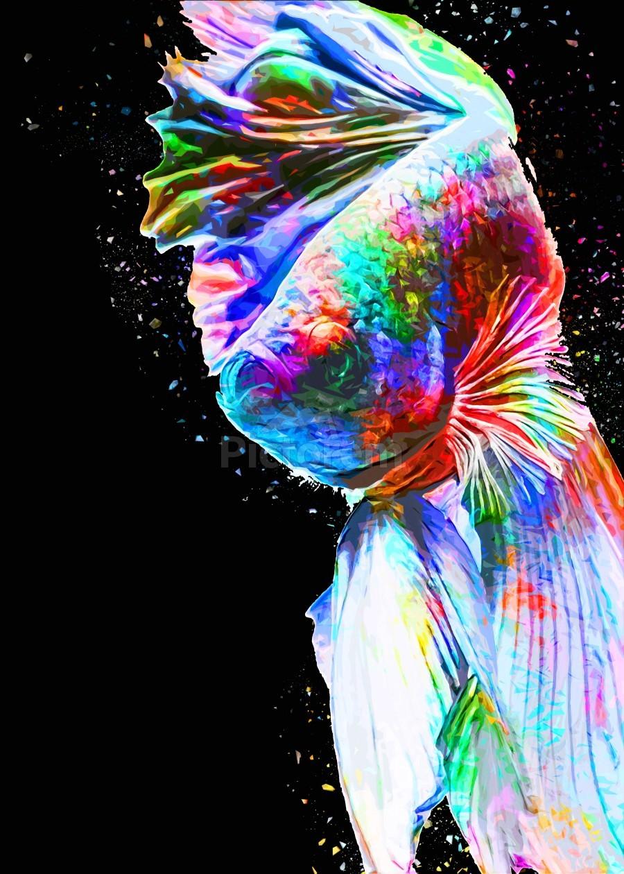 Betta Fish Lover 24  Print