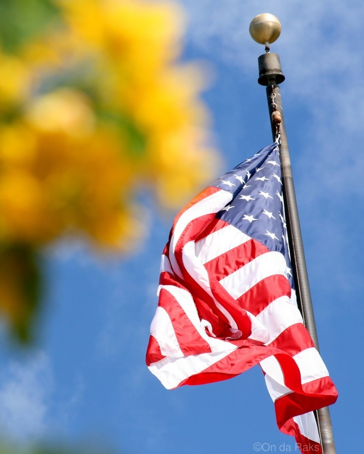 United States Flag  Print