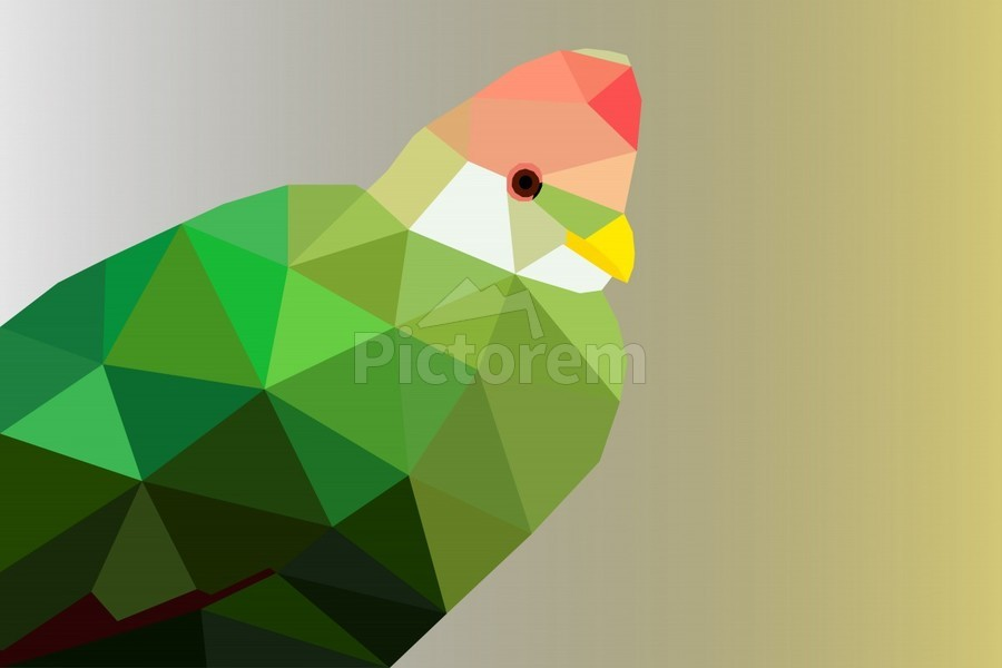 RED CRESTED TURACO LOW POLY ART  Print