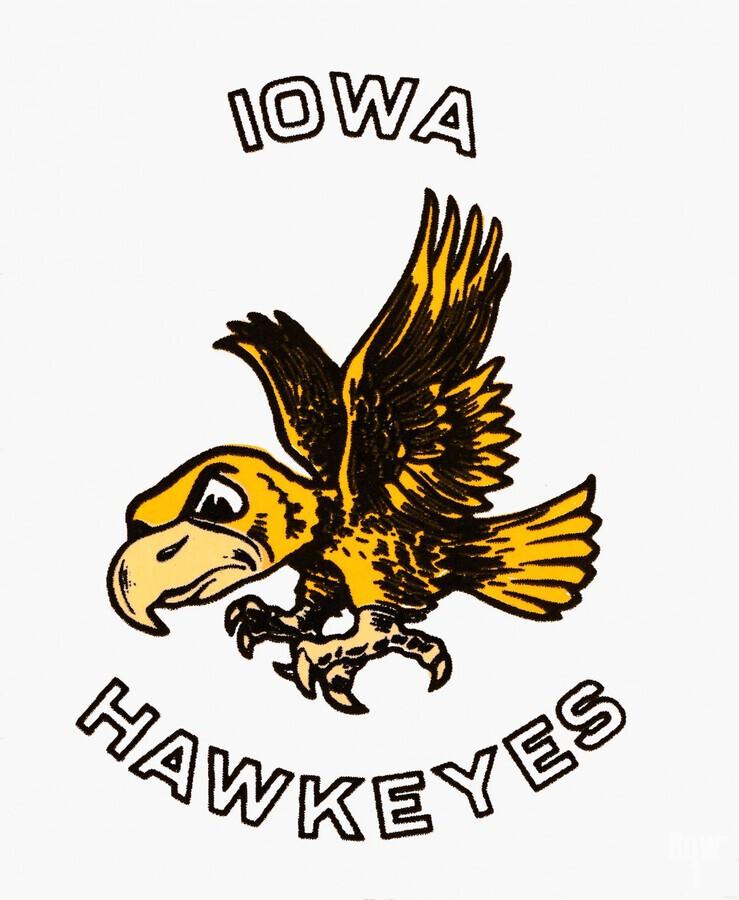 vintage iowa hawkeyes wood signs college mascot art  Print