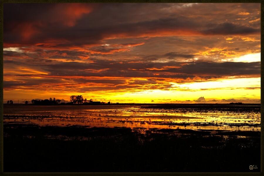 granite belt sunset  Print