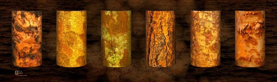 tree bark strong  Print