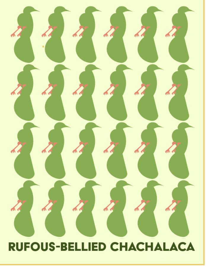 Rufus -Bellied ChaChalaca  Print