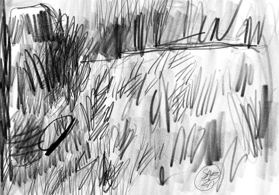 Lawn sketch  Print