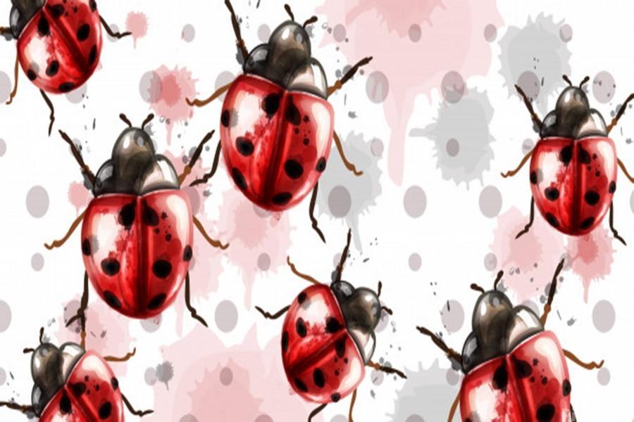 ladybugs pattern texture watercolor_  Print