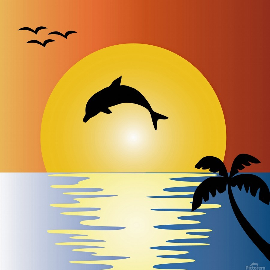ocean sunset dolphin palm tree  Print
