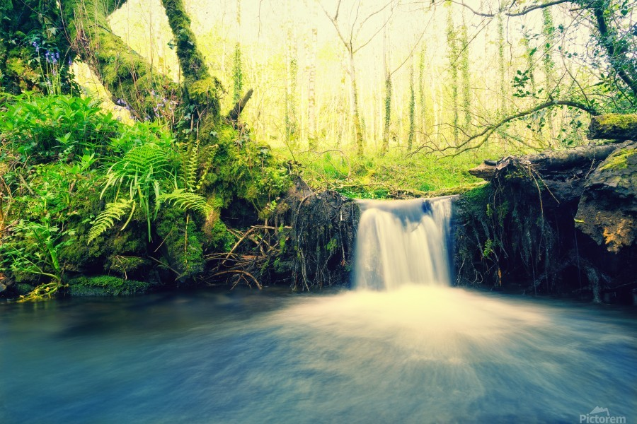 waterfall river nature forest   Print