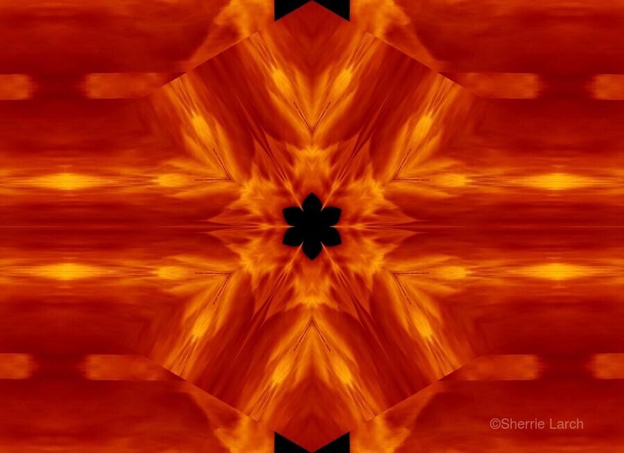 Fire Flowers 62  Print