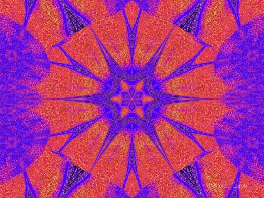 Lotus And Sunshine 2  Print