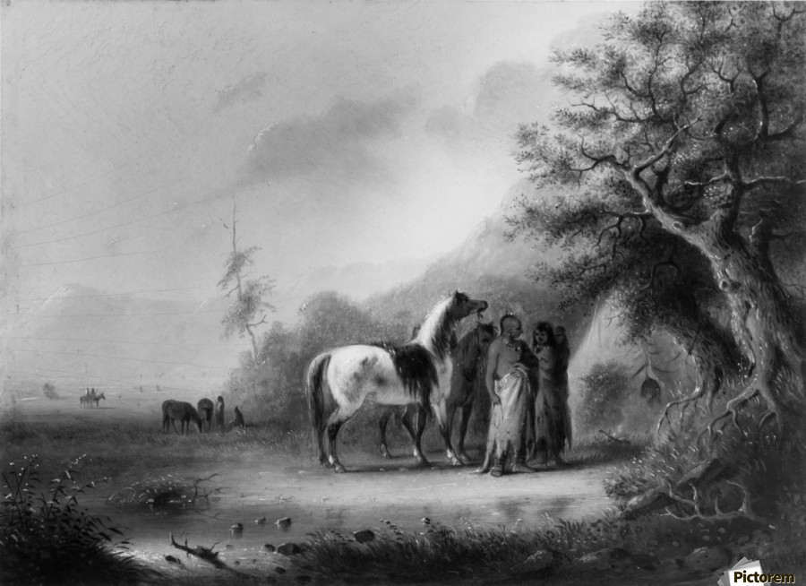 Sioux Indians in the mountains  Print