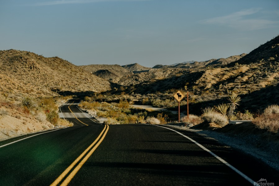 Joshua Tree Road  Imprimer