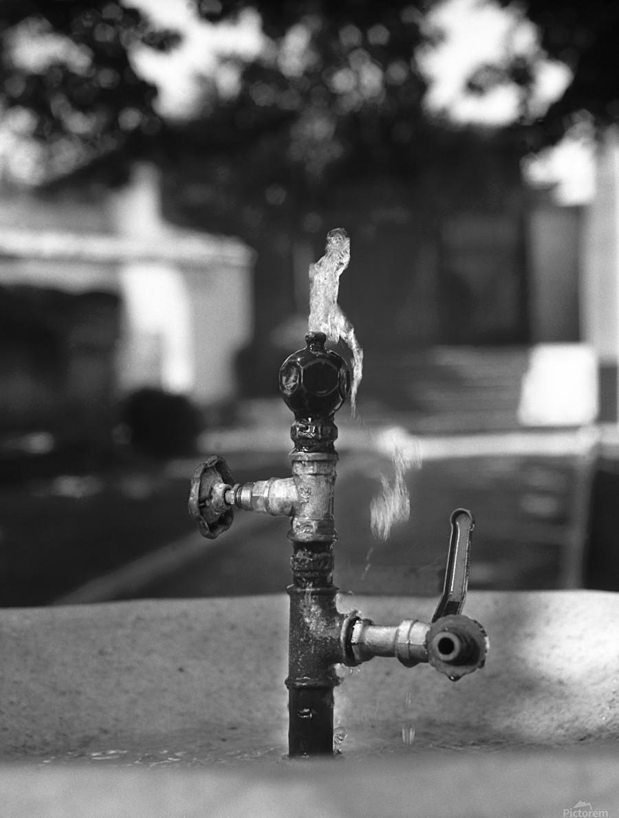 City Park Faucet  Print