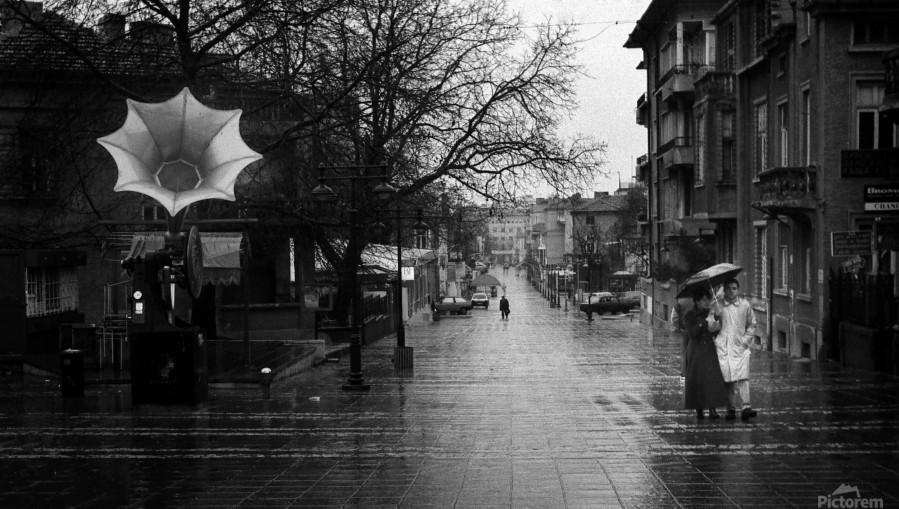 Rainy  Print