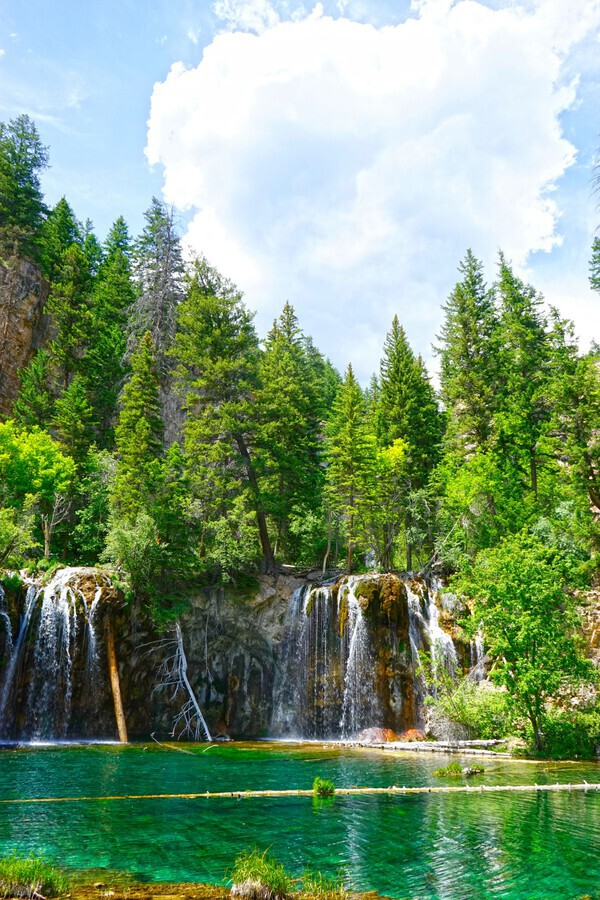 Back Country Waterfalls  Print