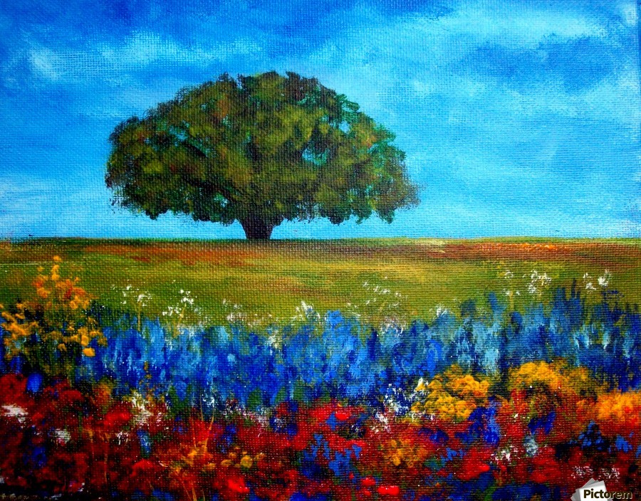 Field Of Flowers Tami Booher Appalachian Nature Painter Canvas