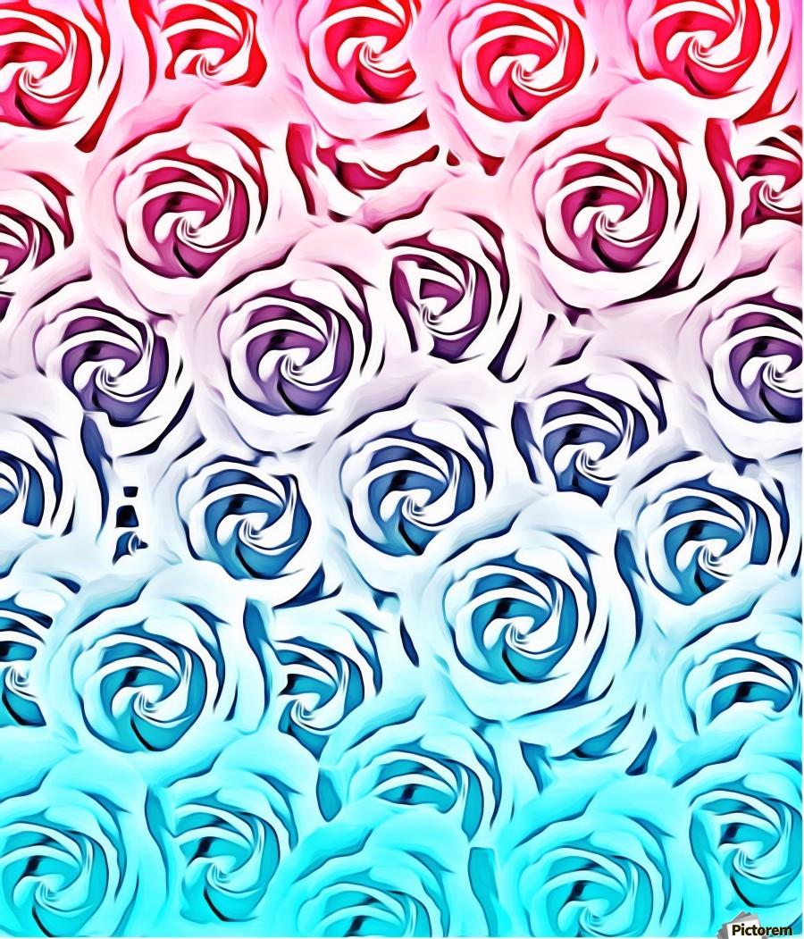 blooming rose pattern texture abstract background in pink and blue  Print