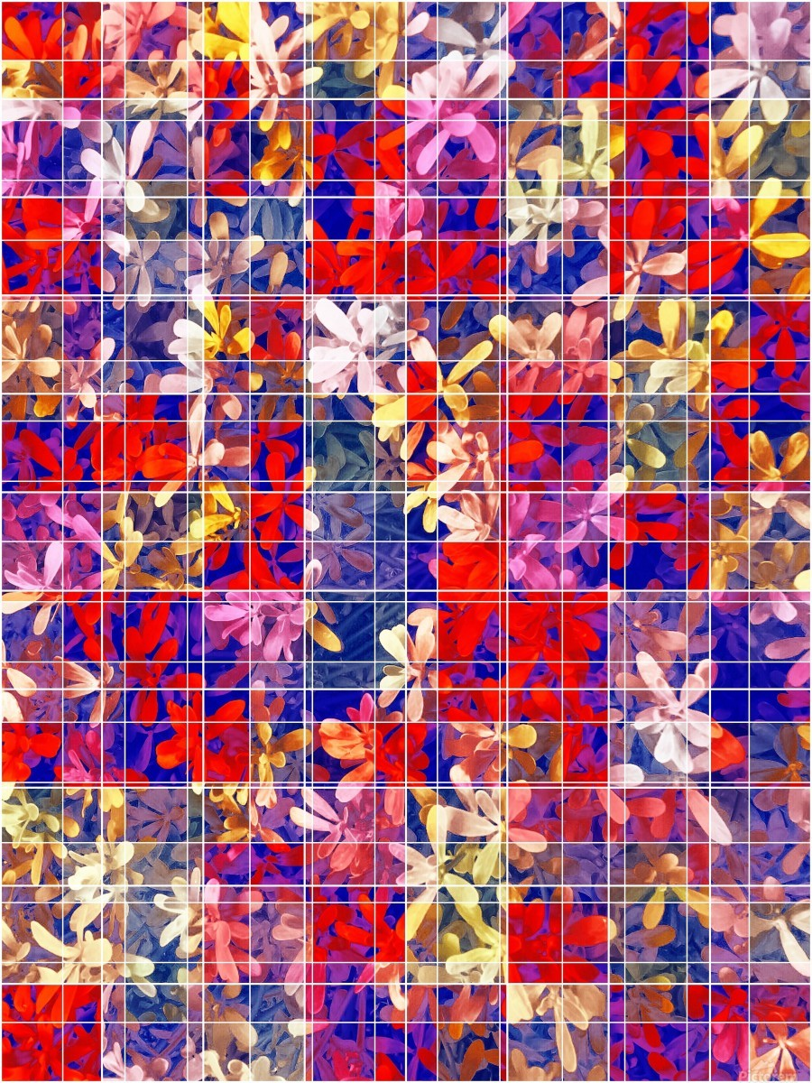 blooming flower with square pattern abstract in red and blue  Print