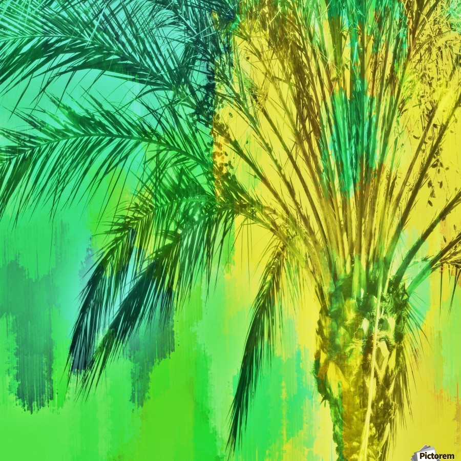 isolate palm tree with painting abstract background in green yellow  Print