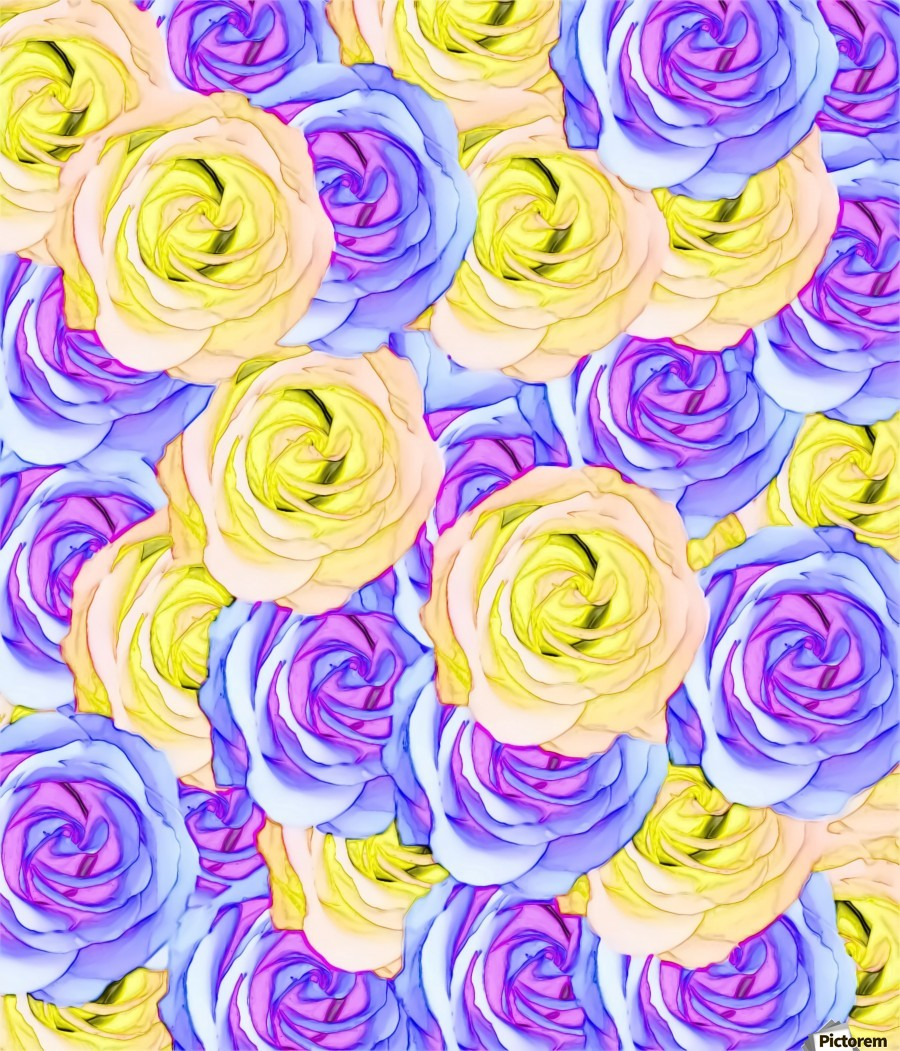 Blooming Rose Texture Pattern Abstract Background In Yellow And Pink