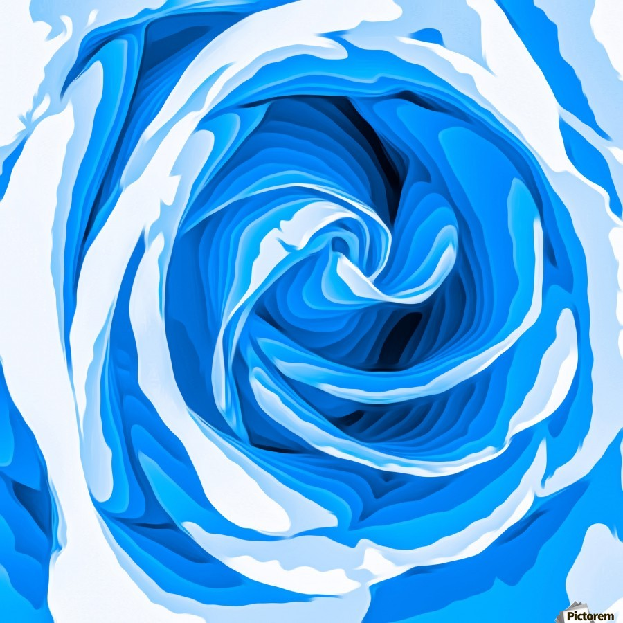 closeup blue rose texture abstract background  Print