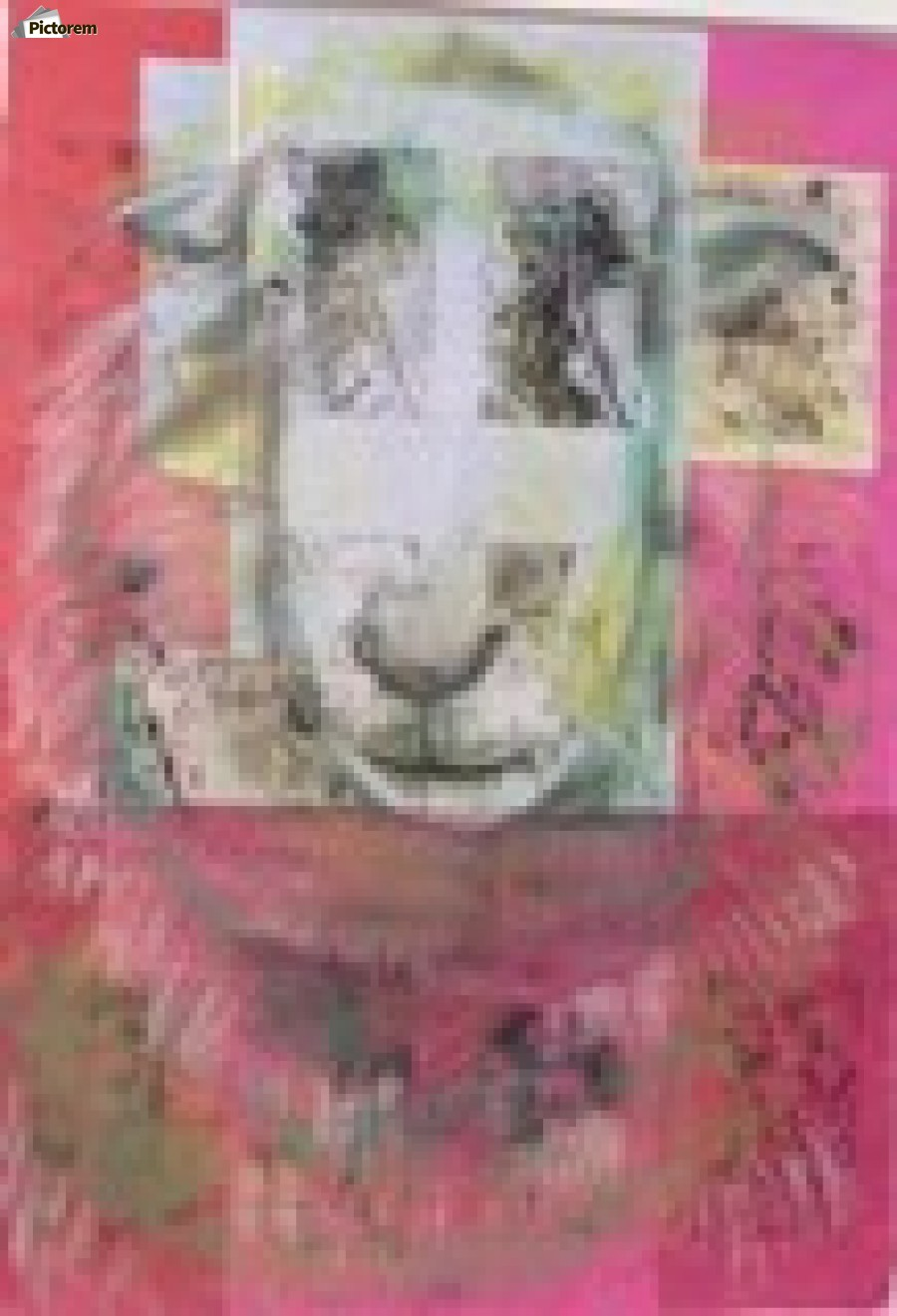 sheep face  Print