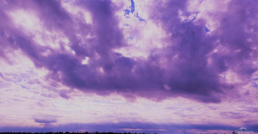 Purple skies  Print