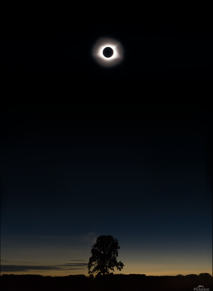 Eclipse 2017  Print