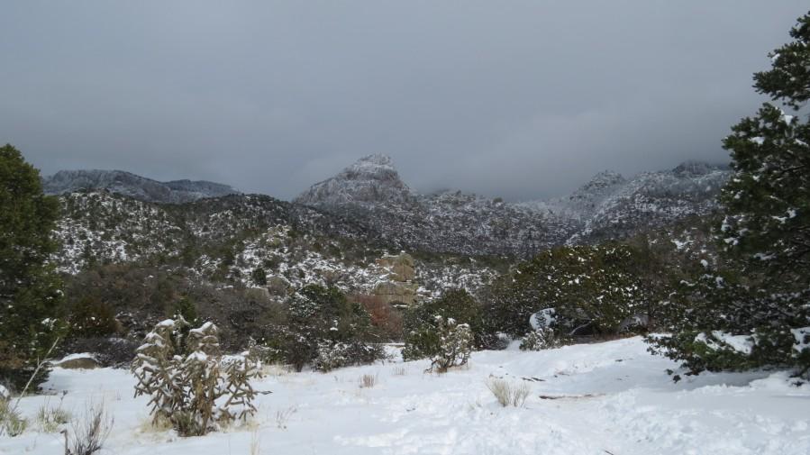Sandia Mountains in the Snow 7 VP  Print