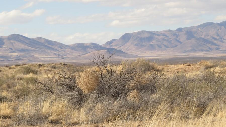 Landscape around Fort Craig VP1  Print