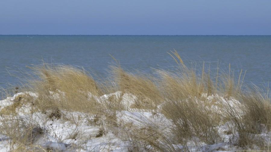 Gillson Beach in the Winter VP1  Print