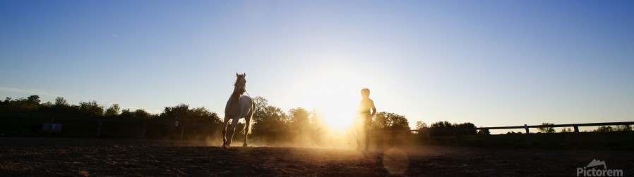 Lunging at Sunset  Print