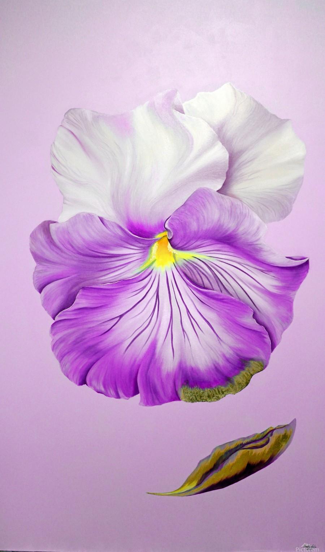 Purple Pansy  Print