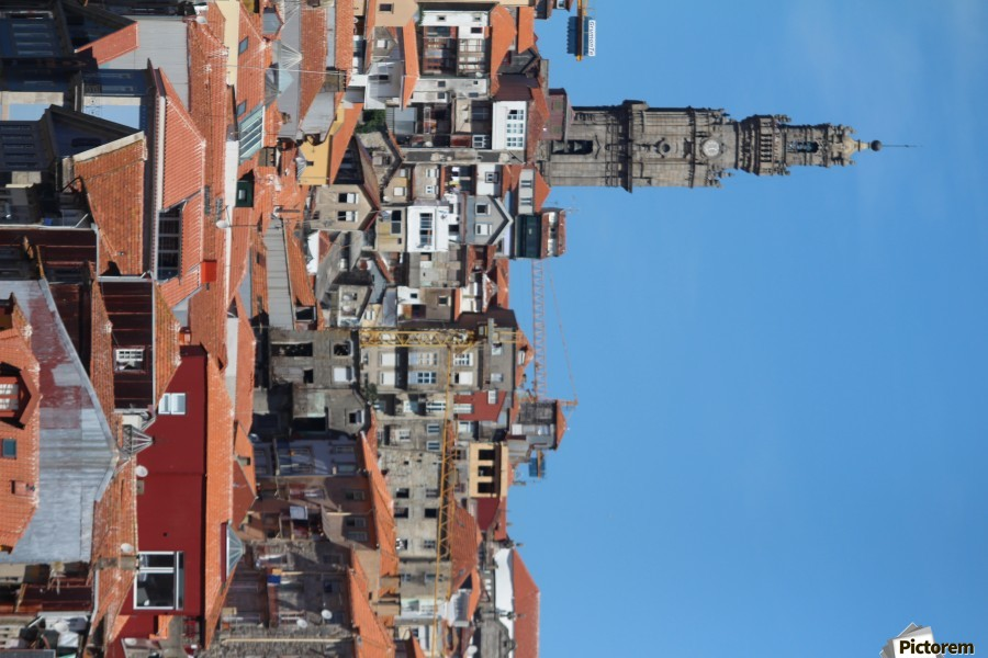 Oporto City the Clerigos Tower  Print