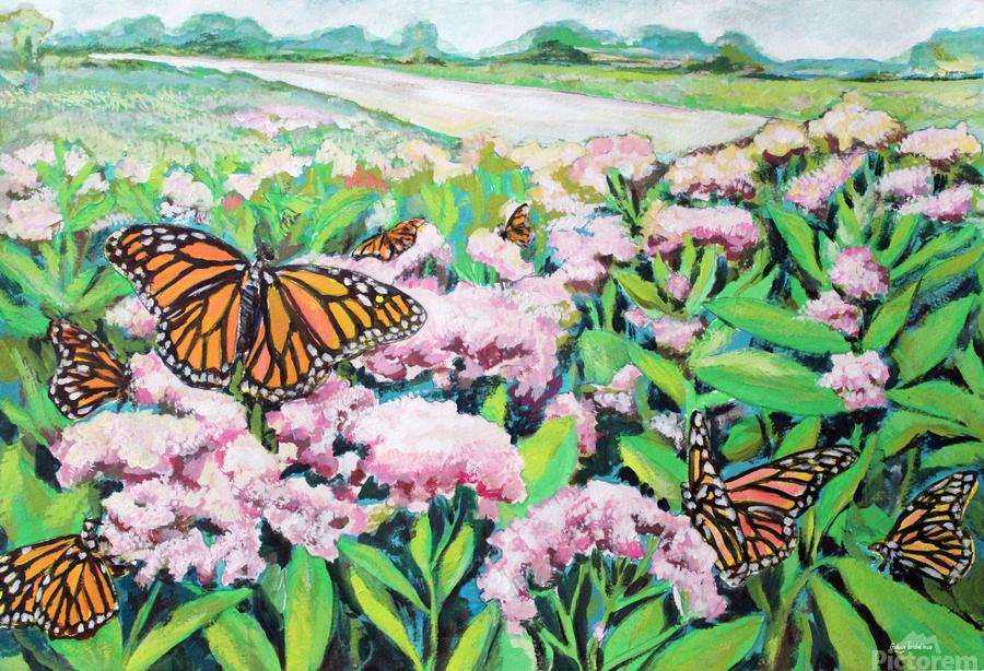 CountyMonrachButterflies  Print