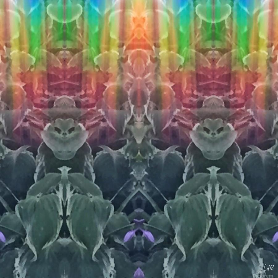 Cool Cats  Print
