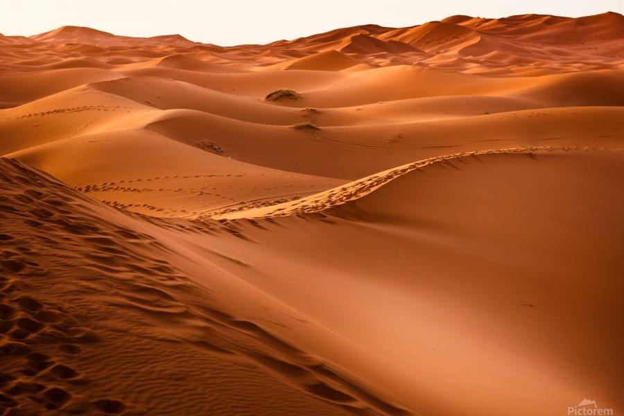 Beautiful Nature Landscape Hot Sun Desert Sahara Sand Dune Dunes Hot Climate Photography landscape photo Scenery  Print