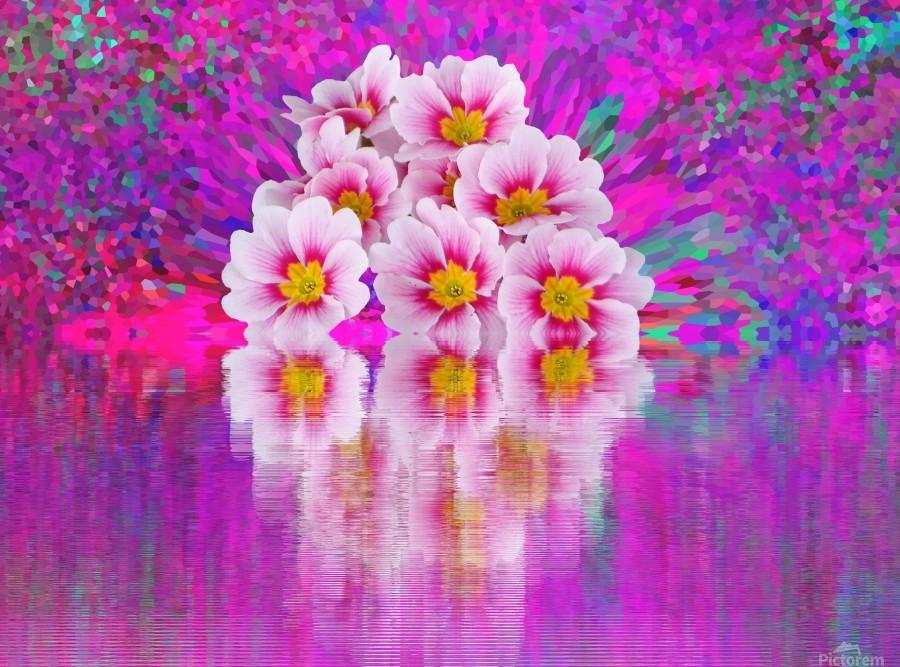 Beautiful colourful flower blossom flower background design floral home decor decoration   Print