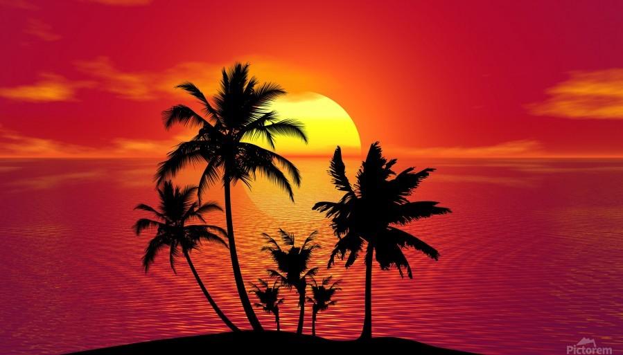 tropical 1651423  Print