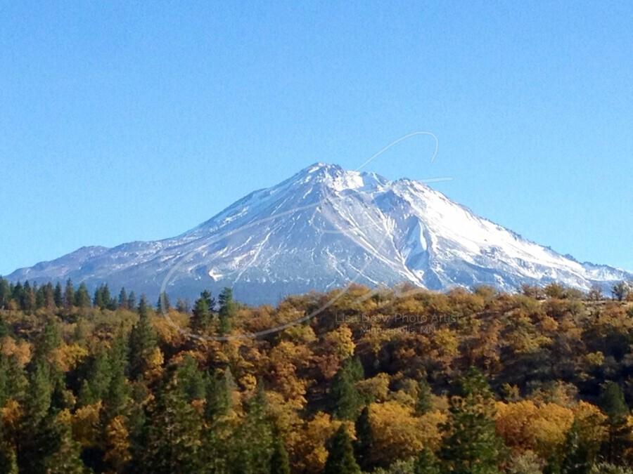 Mt Shasta in Autumn  Print