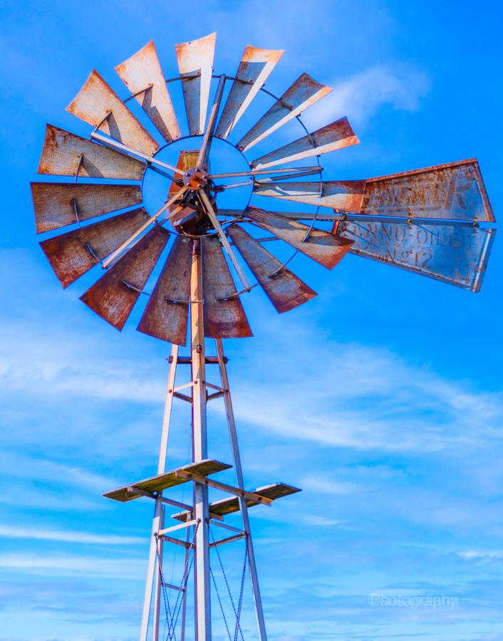Uncle Sams Windmill  Print