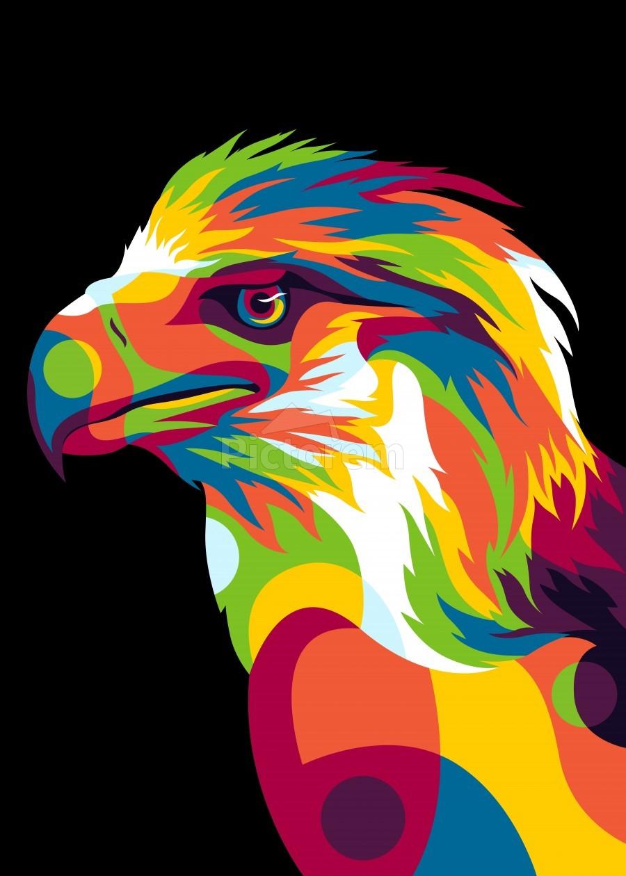 Philippine Eagle Illustration  Print