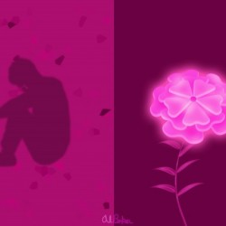 A Flower Blooms in Shadow