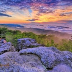 Sunrise - AP 3790