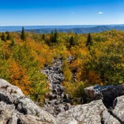 Bear Rocks apmi 1764